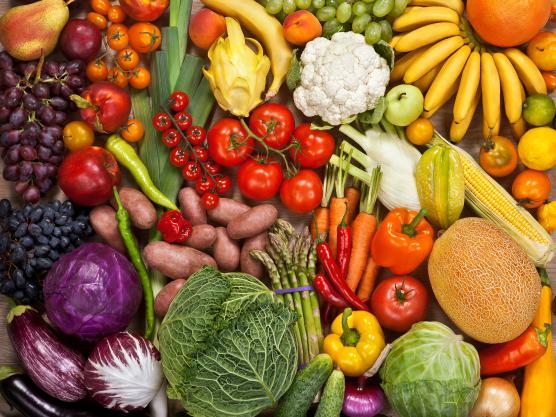 Výsledek obrázku pro vegetariáni